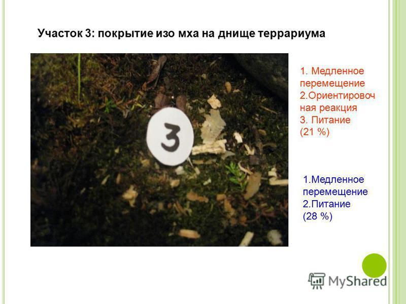 Участок 3: покрытие изо мха на днище террариума 1. Медленное перемещение 2. Ориентировоч ная реакция 3. Питание (21 %) 1. Медленное перемещение 2. Питание (28 %)