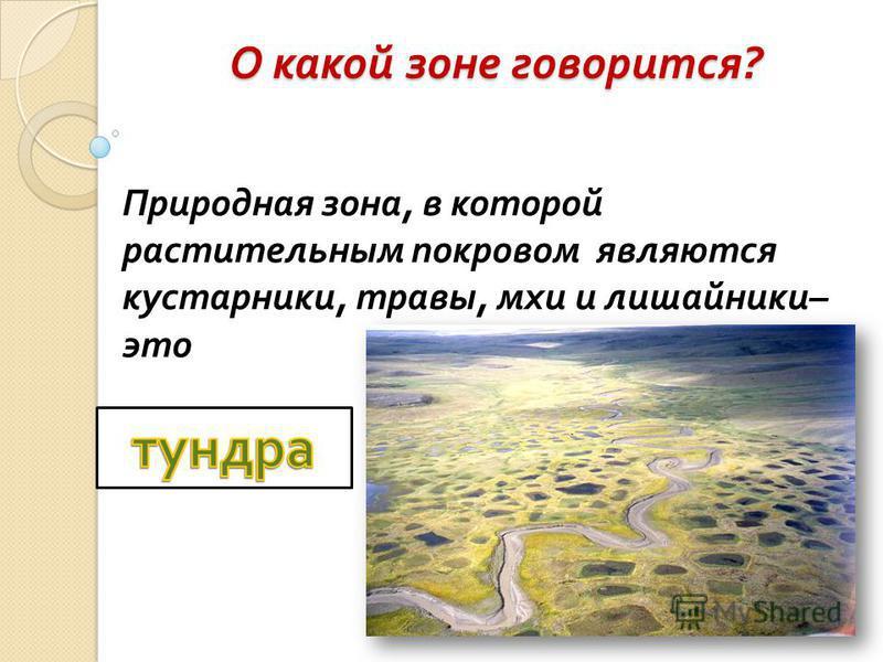 О какой зоне говорится ? Природная зона, в которой растительным покровом являются кустарники, травы, мхи и лишайники – это
