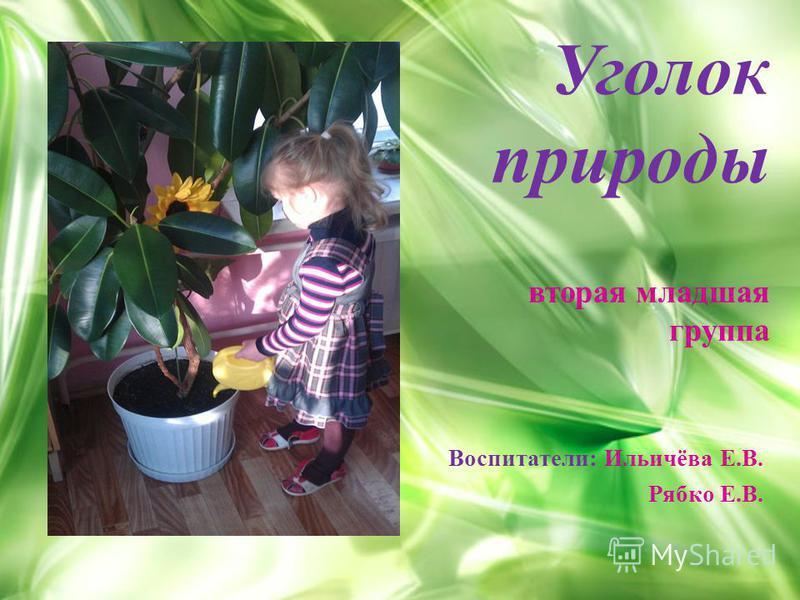 Уголок природы вторая младшая группа Воспитатели: Ильичёва Е.В. Рябко Е.В.