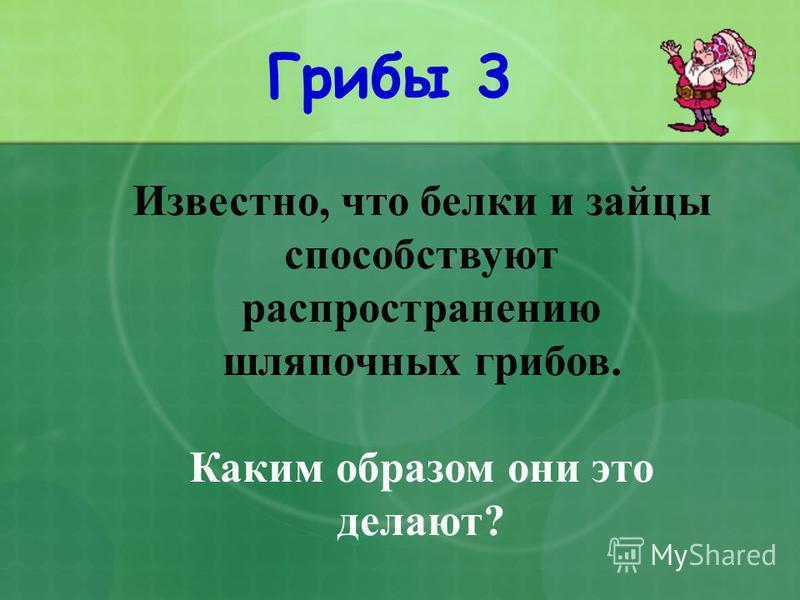 Грибы 3 Известно, что белки и зайцы способствуют распространению шляпочных грибов. Каким образом они это делают?