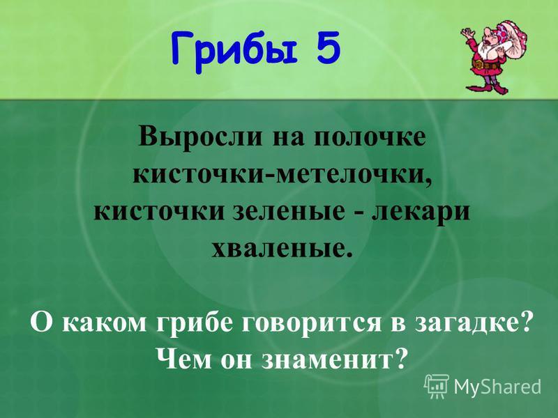 Грибы 5 Выросли на полочке кисточки-метелочки, кисточки зеленые - лекари хваленые. О каком грибе говорится в загадке? Чем он знаменит?