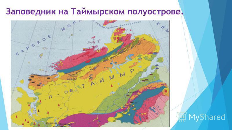 Заповедник на Таймырском полуострове.