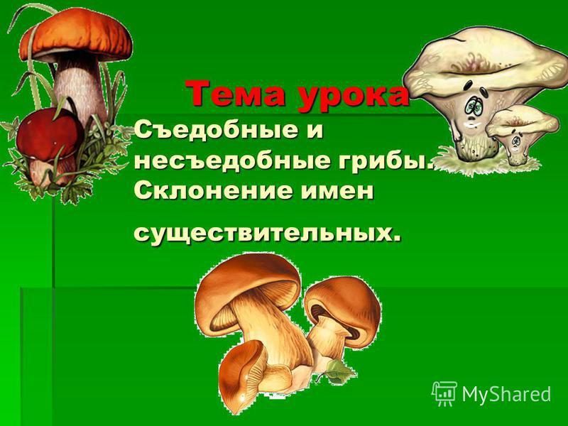 Тема урока Съудобные и несъудобные грибы. Склонение имен существительных.