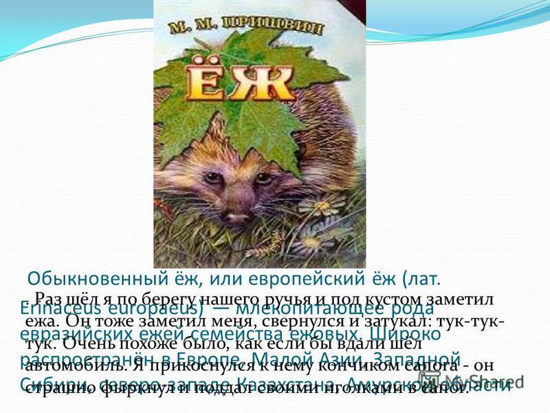 Обыкновенный ёж, или европейский ёж (лат. Erinaceus europaeus) млекопитающее рода евразийских ежей семейства ежовых. Широко распространён в Европе, Малой Азии, Западной Сибири, северо-западе Казахстана, Амурской области. Раз шёл я по берегу нашего ру