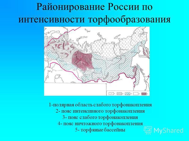 Районирование России по интенсивности торфообразования 1-полярная область слабого торфа накопления 2- пояс интенсивного торфа накопления 3- пояс слабого торфа накопления 4- пояс ничтожного торфа накопления 5- торфяные бассейны