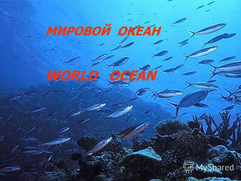 МИРОВОЙ ОКЕАН WORLD OCEAN