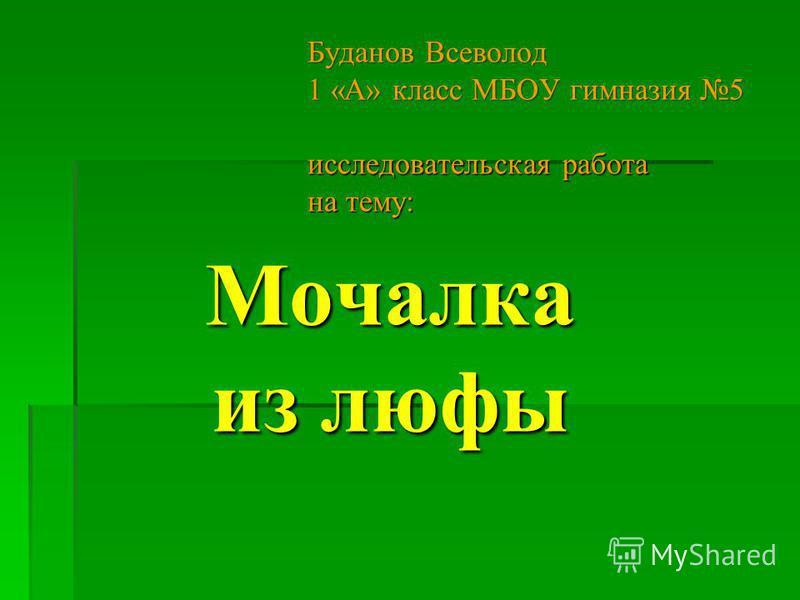 Мочалка из люфы Буданов Всеволод 1 «А» класс МБОУ гимназия 5 исследовательская работа на тему: