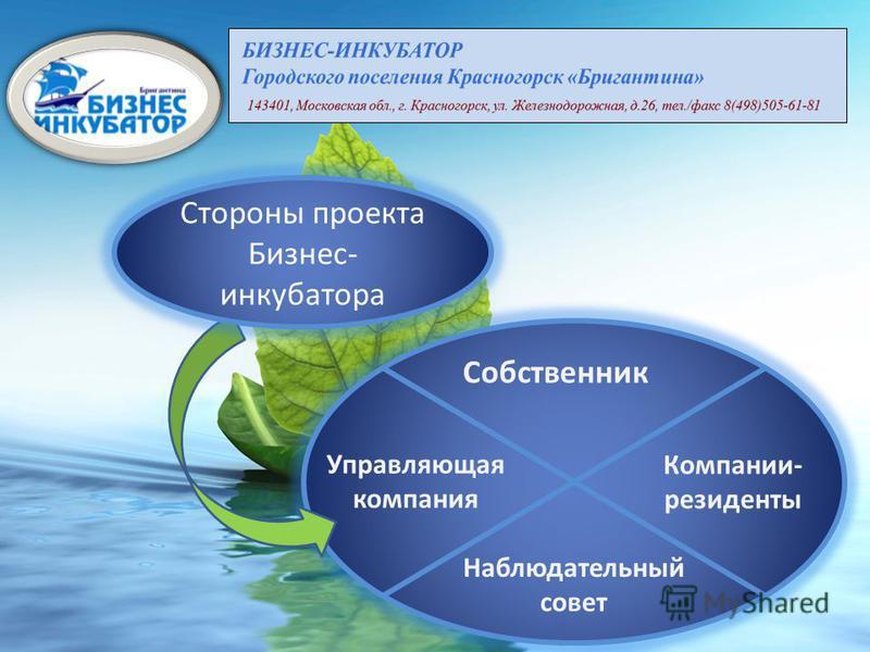 Собственник Наблюдательный совет Управляющая компания Компании- резиденты Стороны проекта Бизнес- инкубатора