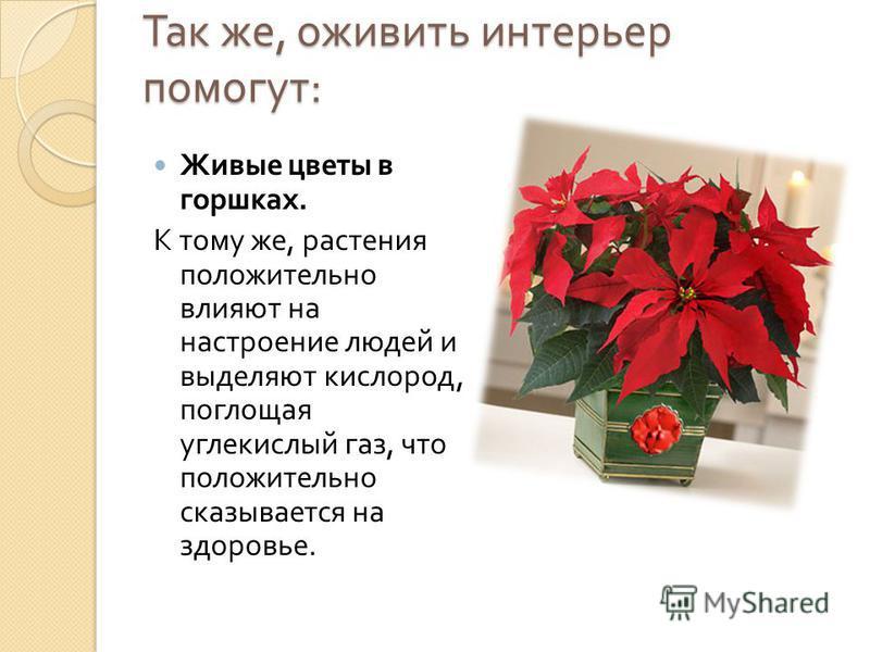 Так же, оживить интерьер помогут : Живые цветы в горшках. К тому же, растения положительно влияют на настроение людей и выделяют кислород, поглощая углекислый газ, что положительно сказывается на здоровье.