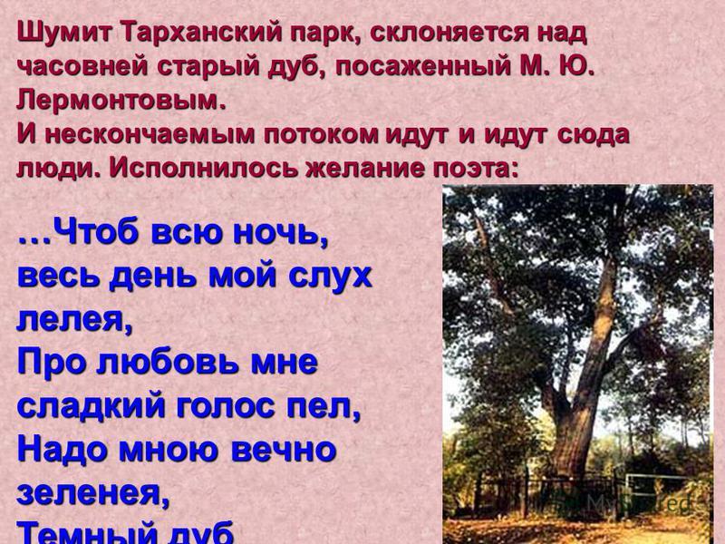 Шумит Тарханский парк, склоняется над часовней старый дуб, посаженный М. Ю. Лермонтовым. И нескончаемым потоком идут и идут сюда люди. Исполнилось желание поэта: …Чтоб всю ночь, весь день мой слух лелея, Про любовь мне сладкий голос пел, Надо мною ве