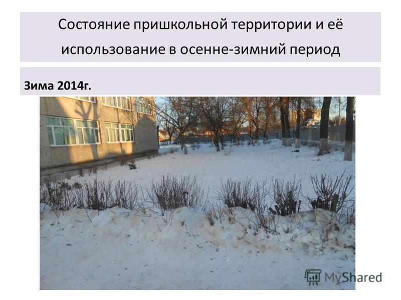 Состояние пришкольной территории и её использование в осенне-зимний период Зима 2014 г.