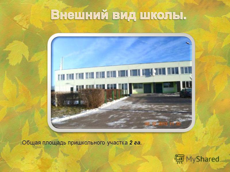 Общая площадь пришкольного участка 2 га.