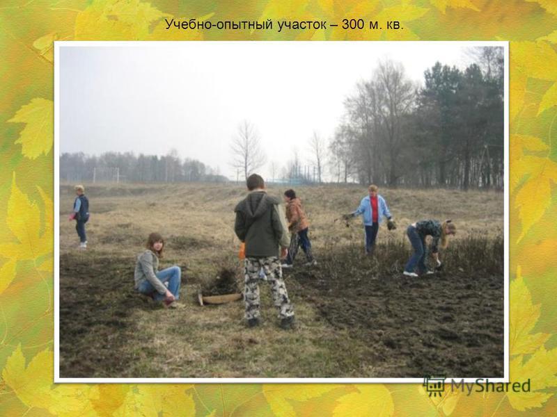 Учебно-опытный участок – 300 м. кв.