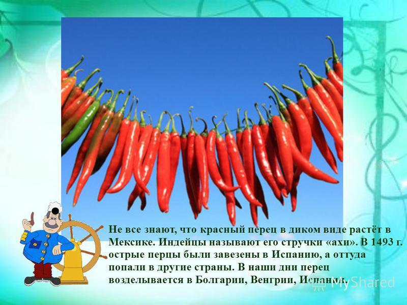 Не все знают, что красный перец в диком виде растёт в Мексике. Индейцы называют его стручки «ахи». В 1493 г. острые перцы были завезены в Испанию, а оттуда попали в другие страны. В наши дни перец возделывается в Болгарии, Венгрии, Испании.
