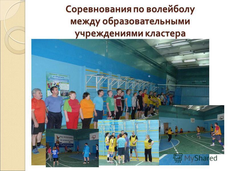 Соревнования по волейболу между образовательными учреждениями кластера