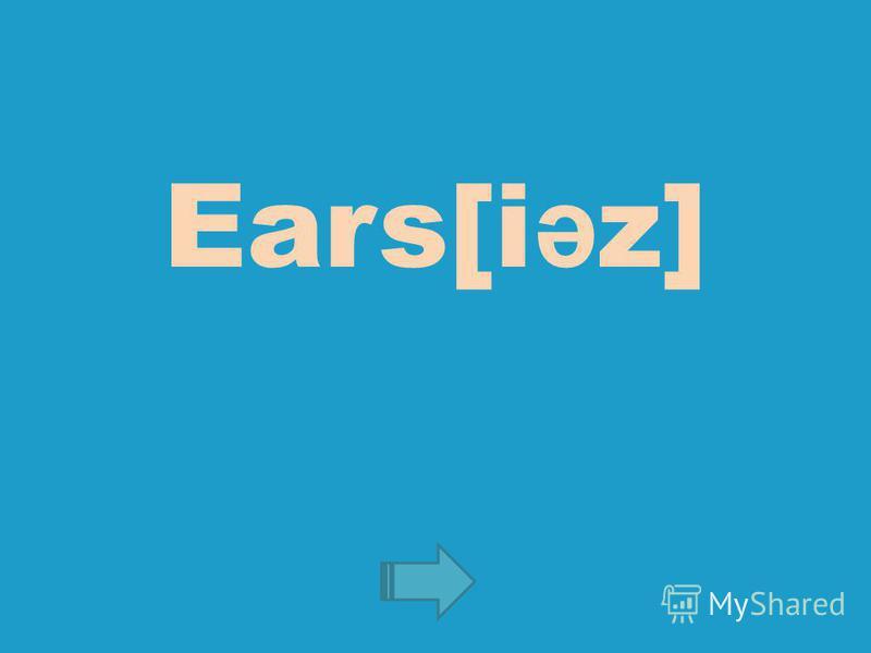 Ears[i ə z]