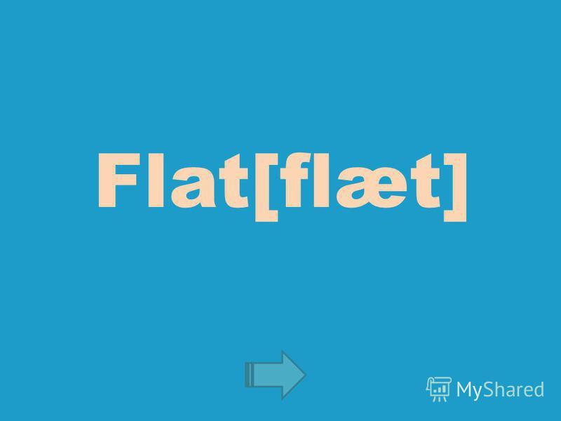 Flat[flæt]