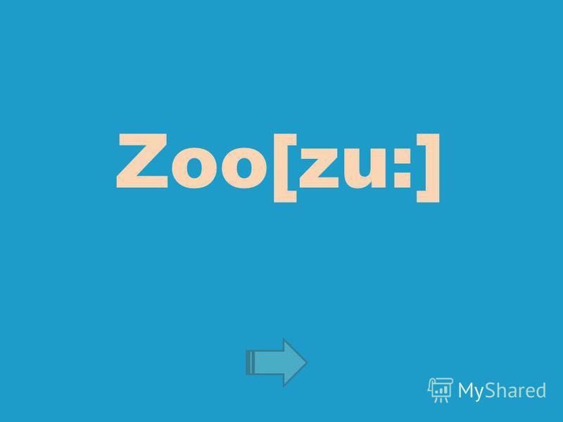 Zoo[zu:]