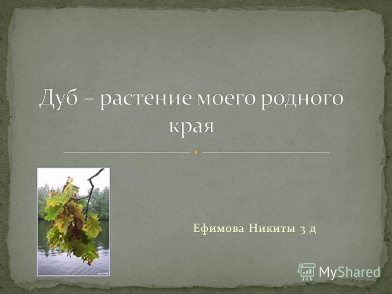 Ефимова Никиты 3 д