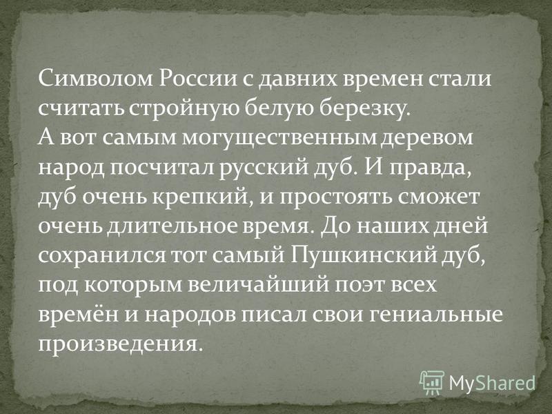 Символом России с давних времен стали считать стройную белую березку. А вот самым могущественным деревом народ посчитал русский дуб. И правда, дуб очень крепкий, и простоять сможет очень длительное время. До наших дней сохранился тот самый Пушкинский