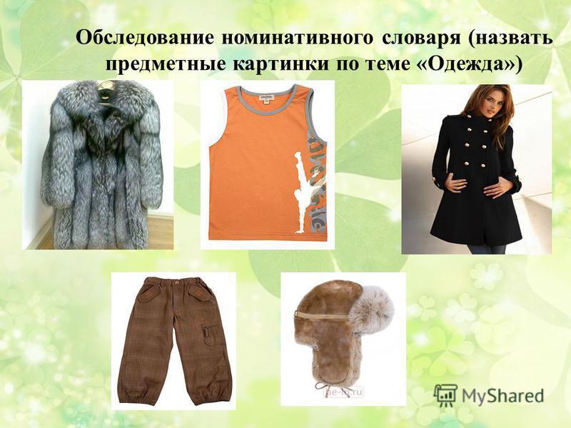 Обследование номинативного словаря (назвать предметные картинки по теме «Одежда»)