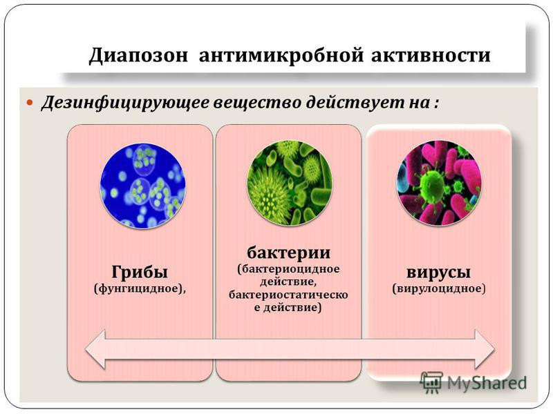 Диапозон антимикробной активности Дезинфицирующее вещество действует на : Грибы ( фунгицидное ), бактерии ( бактерицидное действие, бактериостатическое действие ) вирусы ( вирулицидное )