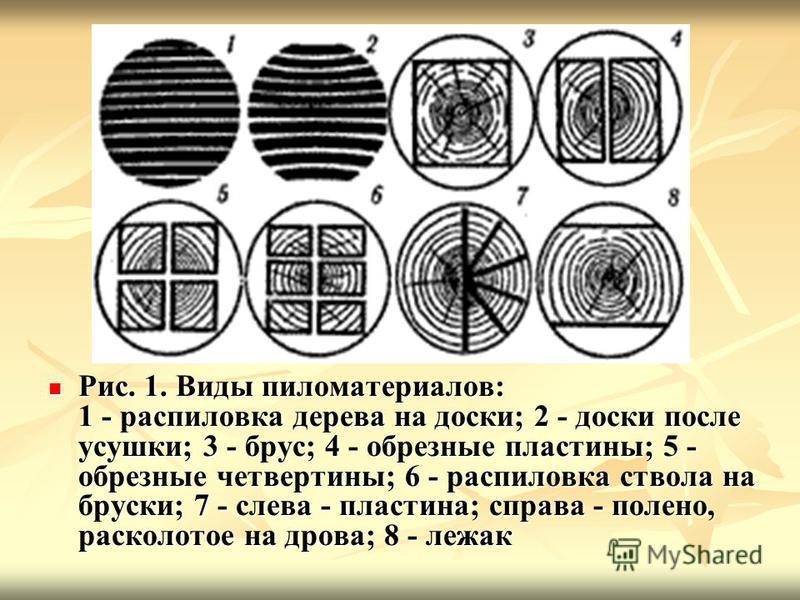 Рис. 1. Виды пиломатериалов: 1 - распиловка дерева на доски; 2 - доски после усушки; 3 - брус; 4 - обрезные пластины; 5 - обрезные четвертины; 6 - распиловка ствола на бруски; 7 - слева - пластина; справа - полено, расколотое на дрова; 8 - лежак Рис.