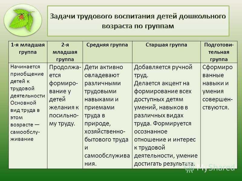 Рекомендации по организации дежурств в разных возрастных группах