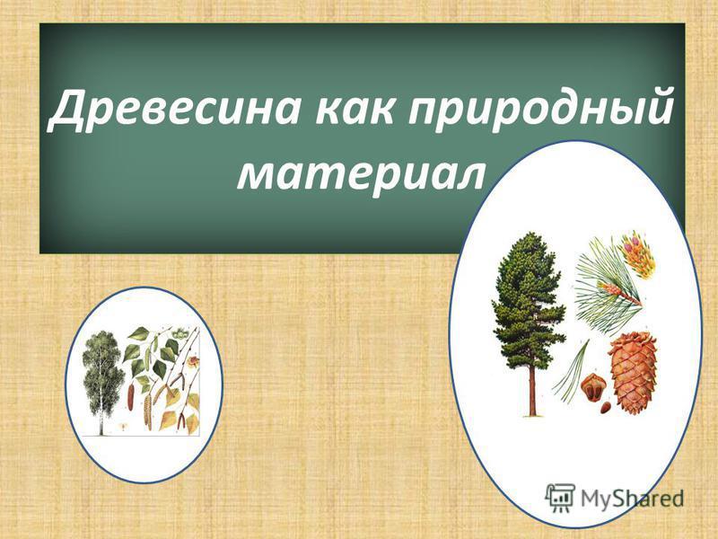 Древесина как природный материал