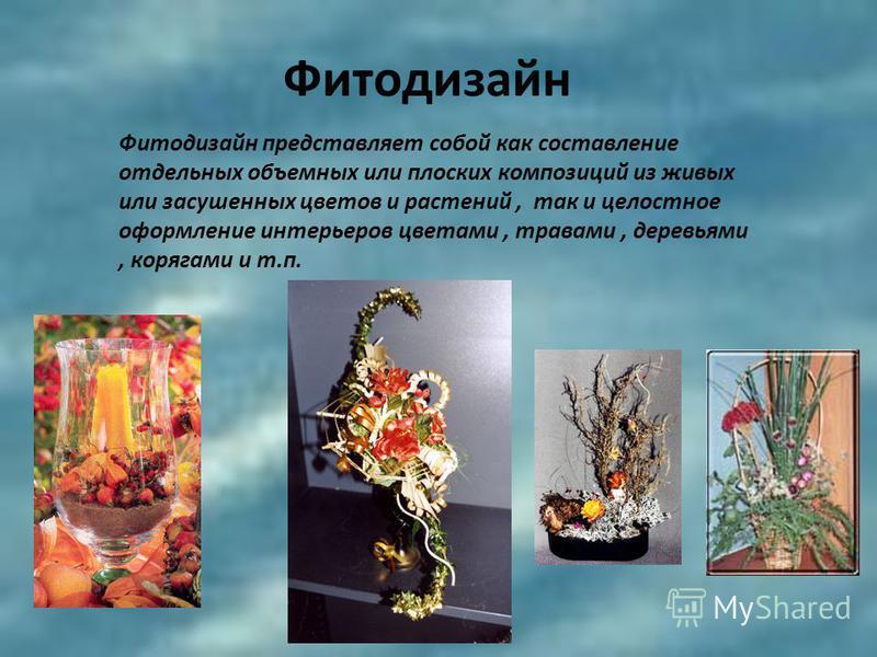 Фитодизайн Фитодизайн представляет собой как составление отдельных объемных или плоских композиций из живых или засушенных цветов и растений, так и целостное оформление интерьеров цветами, травами, деревьями, корягами и т.п.