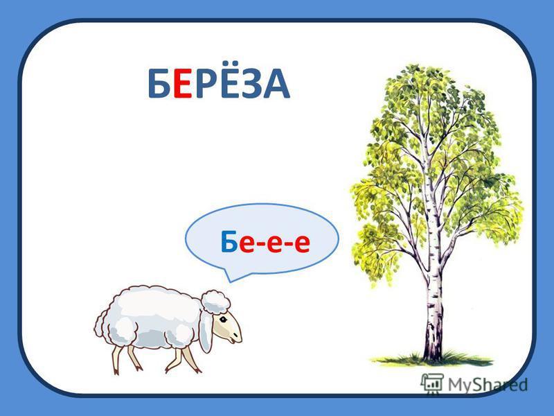 БЕРЁЗА Бе-е-е