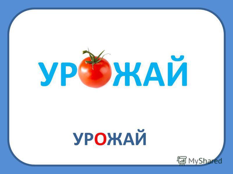 УРОЖАЙ УР ЖАЙ
