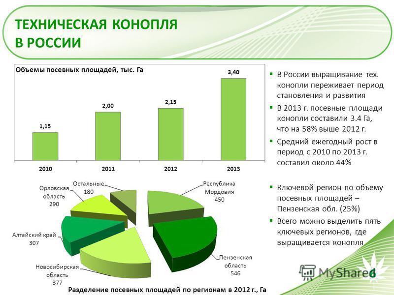 ТЕХНИЧЕСКАЯ КОНОПЛЯ В РОССИИ В России выращивание тех. конопли переживает период становления и развития В 2013 г. посевные площади конопли составили 3.4 Га, что на 58% выше 2012 г. Средний ежегодный рост в период с 2010 по 2013 г. составил около 44%