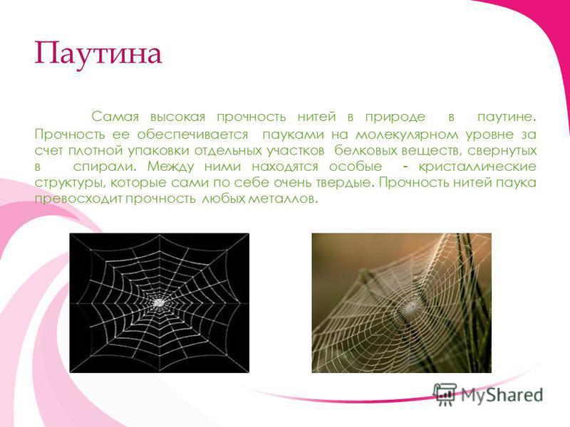 Паутина Самая высокая прочность нитей в природе в паутине. Прочность ее обеспечивается пауками на молекулярном уровне за счет плотной упаковки отдельных участков белковых веществ, свернутых в спирали. Между ними находятся особые - кристаллические стр