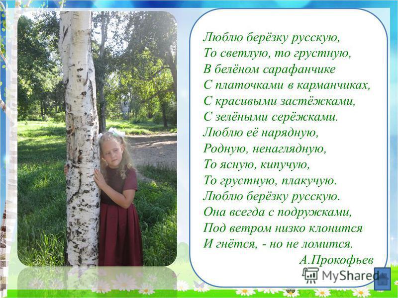 Люблю берёзку русскую, То светлую, то грустную, В белёном сарафанчике С платочками в карманчиках, С красивыми застёжками, С зелёными серёжками. Люблю её нарядную, Родную, ненаглядную, То ясную, кипучую, То грустную, плакучую. Люблю берёзку русскую. О