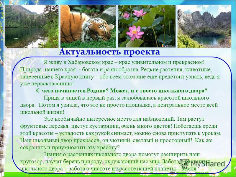 Я живу в Хабаровском крае – крае удивительном и прекрасном! Природа нашего края - богата и разнообразна. Редкие растения, животные, занесенные в Красную книгу – обо всем этом мне еще предстоит узнать, ведь я уже первоклассница! С чего начинается Роди