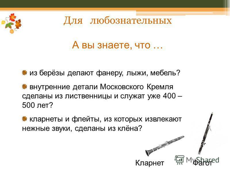Для любознательных А вы знаете, что … из берёзы делают фанеру, лыжи, мебель? внутренние детали Московского Кремля сделаны из лиственницы и служат уже 400 – 500 лет? кларнеты и флейты, из которых извлекают нежные звуки, сделаны из клёна? Кларнет Фагот