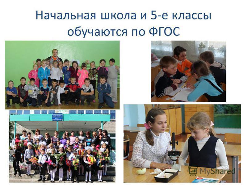 Начальная школа и 5-е классы обучаются по ФГОС