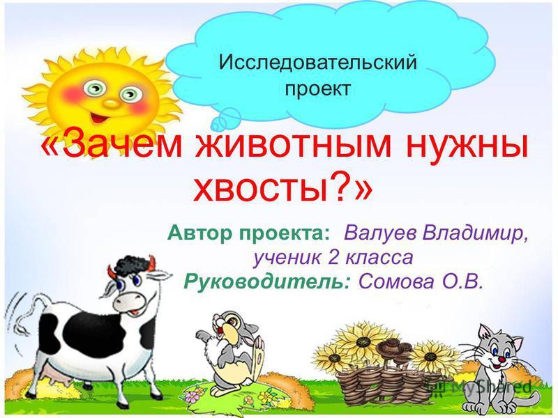 «Зачем животным нужны хвосты?» Исследовательский проект Автор проекта: Валуев Владимир, ученик 2 класса Руководитель: Сомова О.В.