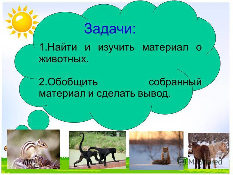 Задачи: 1. Найти и изучить материал о животных. 2. Обобщить собранный материал и сделать вывод.