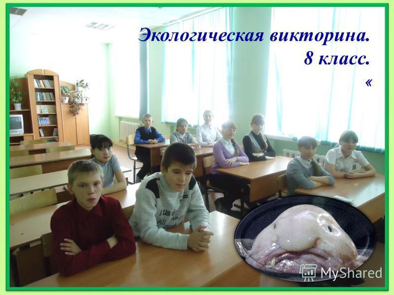 Экологическая викторина. 8 класс. «