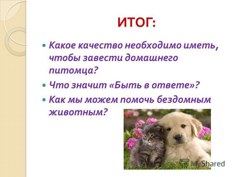 ИТОГ : ИТОГ : Какое качество необходимо иметь, чтобы завести домашнего питомца ? Что значит « Быть в ответе »? Как мы можем помочь бездомным животным ?