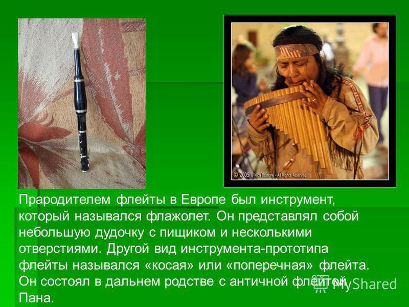 Прародителем флейты в Европе был инструмент, который назывался флажолет. Он представлял собой небольшую дудочку с пищиком и несколькими отверстиями. Другой вид инструмента-прототипа флейты назывался «косая» или «поперечная» флейта. Он состоял в дальн