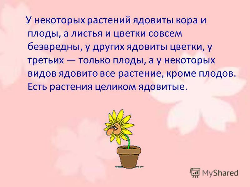 У некоторых растений ядовиты кора и плоды, а листья и цветки совсем безвредны, у других ядовиты цветки, у третьих только плоды, а у некоторых видов ядовито все растение, кроме плодов. Есть растения целиком ядовитые.