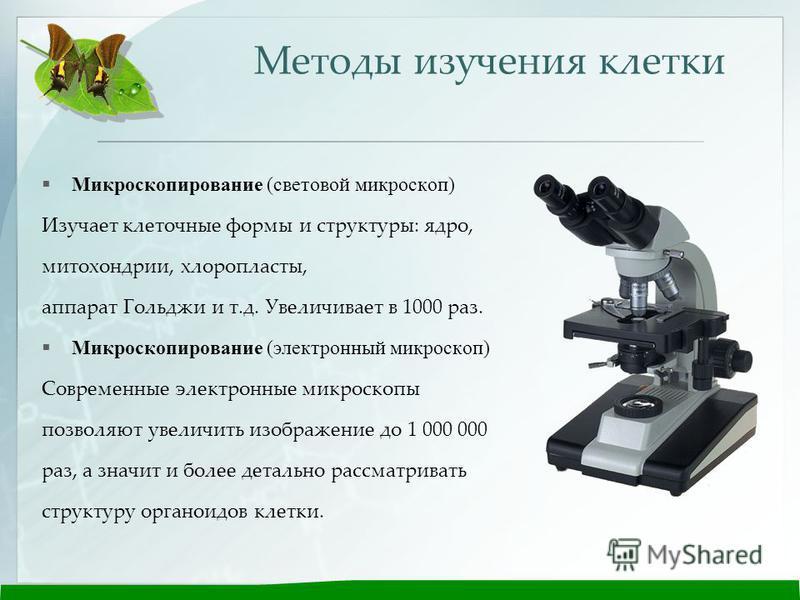 больше светопольная микроскопия факторы определяющие увеличение микроскопа …Белье целом
