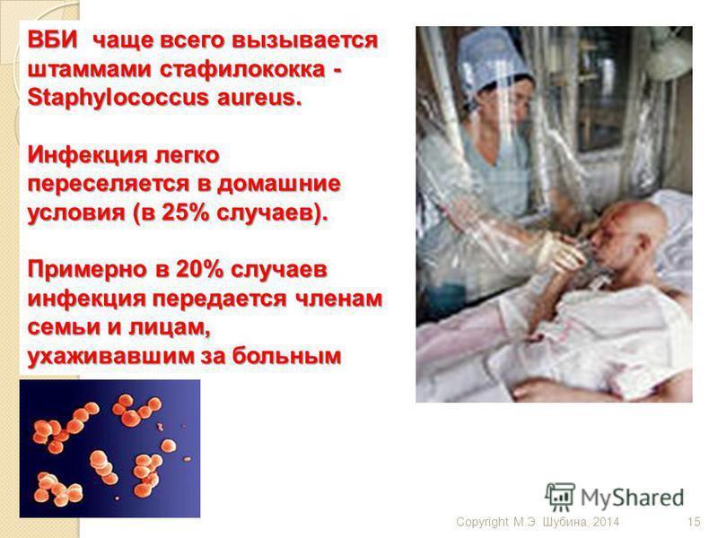 Copyright М.Э. Шубина, 201415 ВБИ чаще всего вызывается штаммами стафилококка - Staphylococcus aureus. Инфекция легко переселяется в домашние условия (в 25% случаев). Примерно в 20% случаев инфекция передается членам семьи и лицам, ухаживавшим за бол