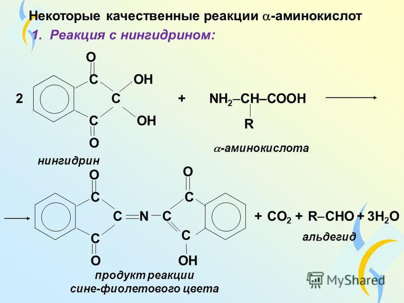 Некоторые качественные реакции -аминокислот 1. Реакция с нингидрином: С С 2 С О ОН О С С С О О нингидрин +NН 2 –CH–СООH R -аминокислота продукт реакции сине-фиолетового цвета N C C C О + CО2 CО2 + R CНO + 3Н 2 O альдегид