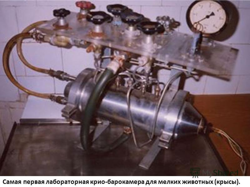 Самая первая лабораторная крио-барокамера для мелких животных (крысы).
