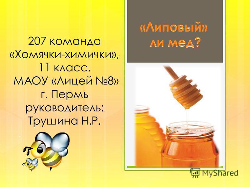 207 команда «Хомячки-химички», 11 класс, МАОУ «Лицей 8» г. Пермь руководитель: Трушина Н.Р.