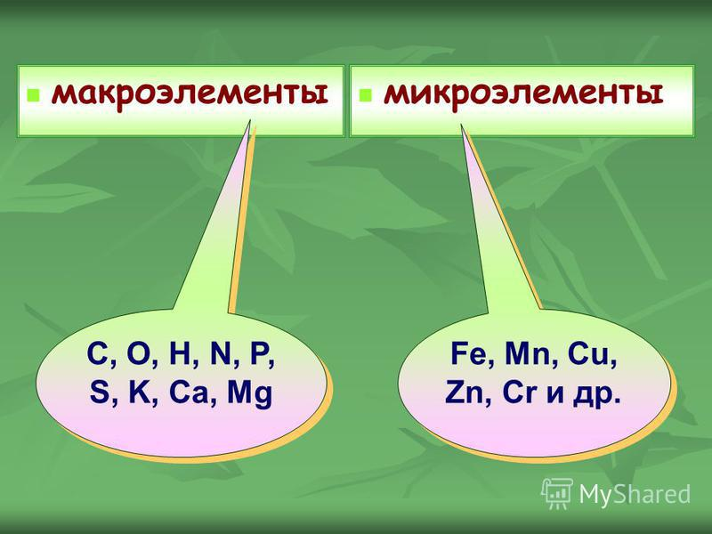макроэлементы микроэлементы Fe, Mn, Cu, Zn, Cr и др. Fe, Mn, Cu, Zn, Cr и др. C, O, H, N, P, S, K, Ca, Mg C, O, H, N, P, S, K, Ca, Mg